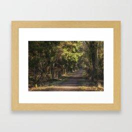 Late Winter Walk Framed Art Print