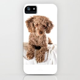 Kenzie the poodle iPhone Case