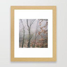 """""""Into the woods VII"""". Wandering into the fog Framed Art Print"""