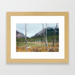 Buller Gap Framed Art Print