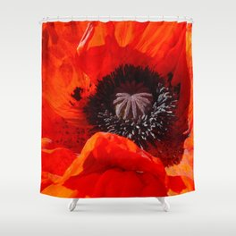 Georgia, Ode to, by Mandy Ramsey Shower Curtain