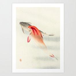 Two carp fish - Vintage Japanese Woodblock Print Art Print Art Print