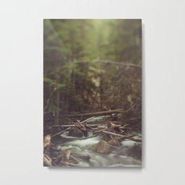 Cold Spring Creek Metal Print