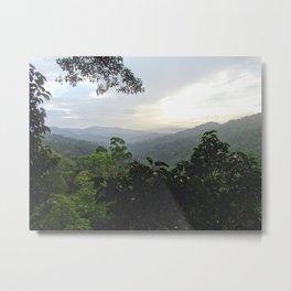 Loas Jungle Metal Print