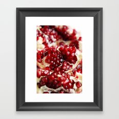 Pomegranate  Framed Art Print