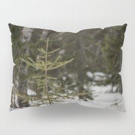 Pine Tree Pillow Sham