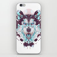 husky iPhone & iPod Skins featuring husky by yoaz