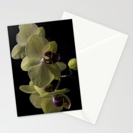The Yellow Orchid Stationery Cards