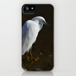 Immature Snowy Egret iPhone Case