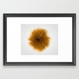Orange Fuzz Framed Art Print