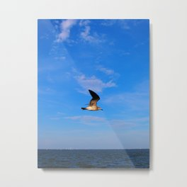 Break Away Metal Print