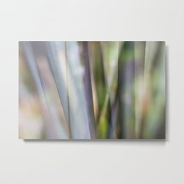 Entranced Metal Print