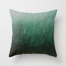 Castillo Patina Throw Pillow