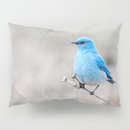 Mountain Bluebird on the Tansy Pillow Sham