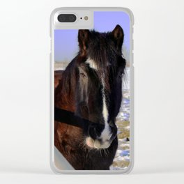 Mahogany Bay Draft Horse Clear iPhone Case