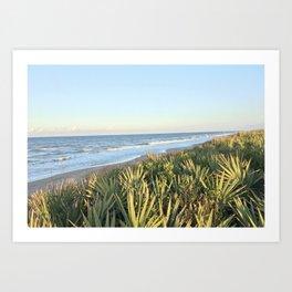 Landscape at Canaveral National Shore Art Print