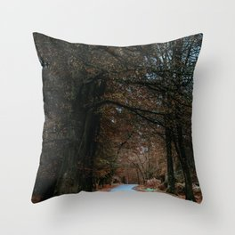 Eerie Autumn Path (Color) Throw Pillow