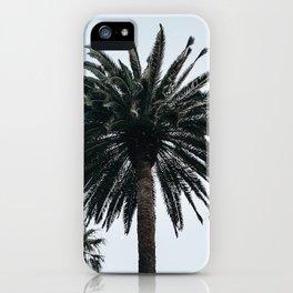 Hau`oli II. iPhone Case