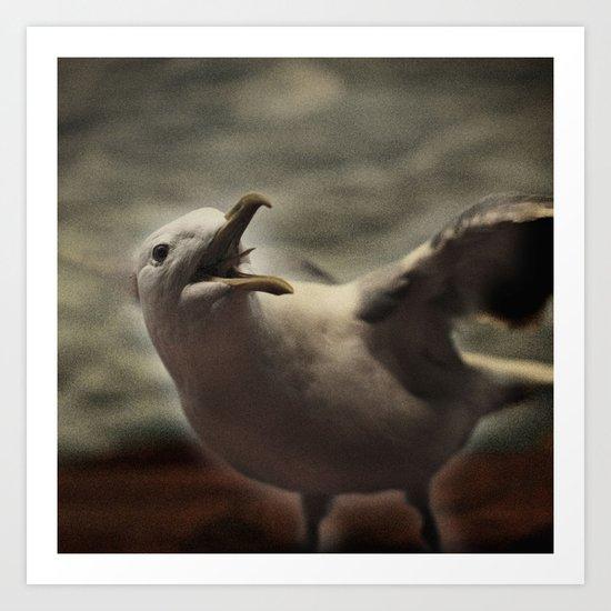 Tom Feiler Seagull Art Print