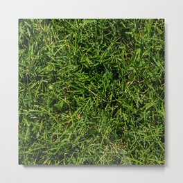 The Grass is Always Greener Right Here Metal Print