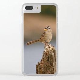 Checking things out! Clear iPhone Case
