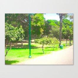 The Raanana Park 8 Canvas Print