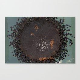 Water Damage Canvas Print