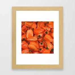 Habanero Peppers Framed Art Print