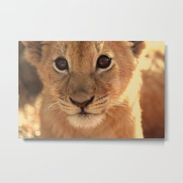 And Some People Think Animals Don't Have Souls... Metal Print