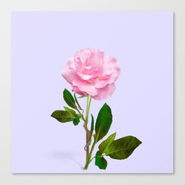 SINGLE PINK ROSE FOR LOVE Canvas Print