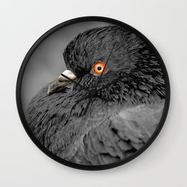 Feather Noir. Black and White Pigeon Photograph Wall Clock