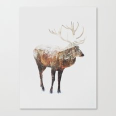 Arctic Deer Canvas Print