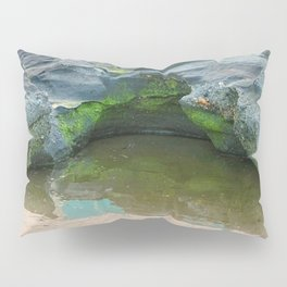 Moss on  rocks with puddle on the East Coast of Queensland, Australia Pillow Sham