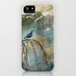 HEAVENLY BIRD II iPhone Case