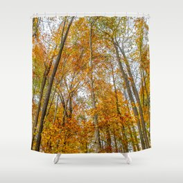Reach High and Touch the Sky Shower Curtain