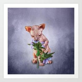 Drawing Sphynx kitten Art Print