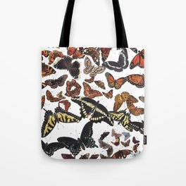 Butterflies of Maine Chart Tote Bag