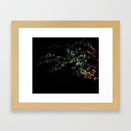 abstract flower bouquet in the moonlight Framed Art Print