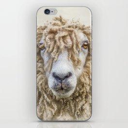 Longwool Sheep iPhone Skin