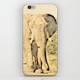 Vintage Animals - Elephant iPhone Skin