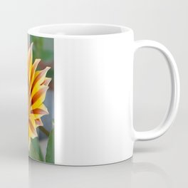 Close Up Tiger Gazania in Red, Gold and Green  Coffee Mug