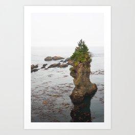 Cape Flattery Island Seastack Mist Misty Washington Olympic Peninsula Forest Pacific Ocean Art Print