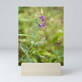 Bella di Sera Mini Art Print