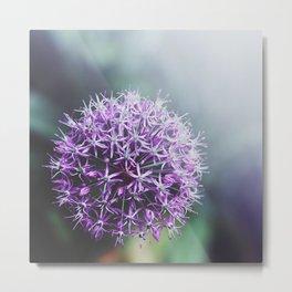 purple II Metal Print