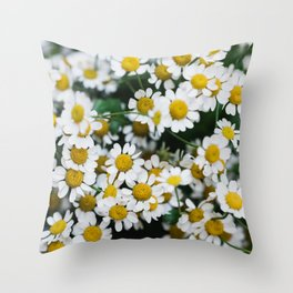 Camomile Wild Flowers Throw Pillow