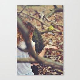 4/365 Canvas Print