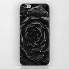 Sempervivum #1 iPhone & iPod Skin
