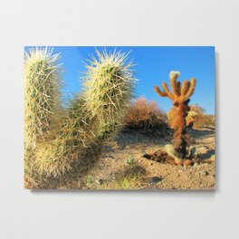 Joshua Tree National Forest Series 2 Metal Print