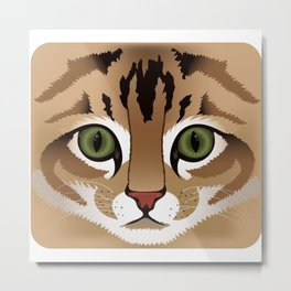 Cute brown tabby cat face close up illustration Metal Print