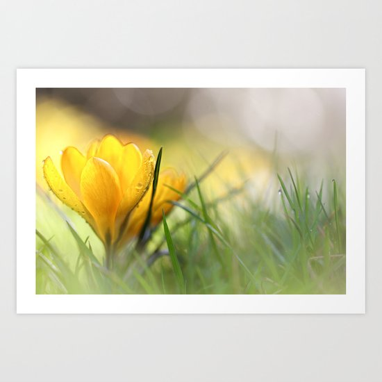 Early in the morning, when it's time.... Art Print